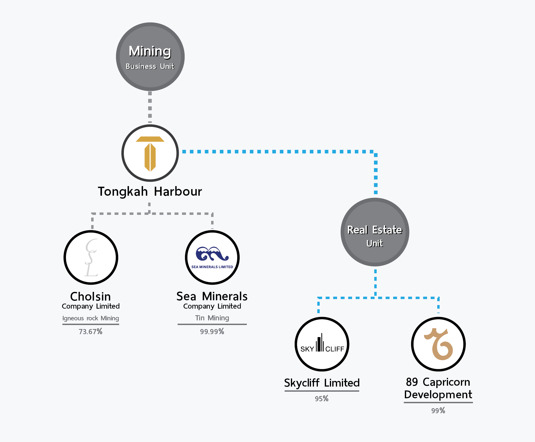 Investment Structure of the THL_eng