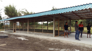 CSR ฟาร์มไก่